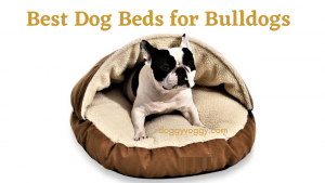 10 Best Dog Beds for Bulldogs in 2021 For Optimal Sleep