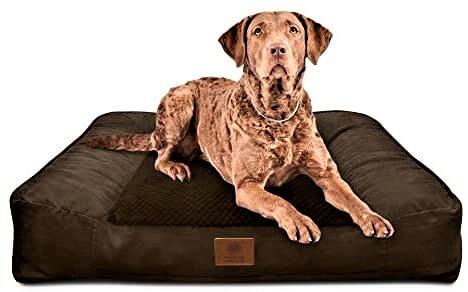 American Kennel Club Orthopedic Couch Sofa Style Dog Bed