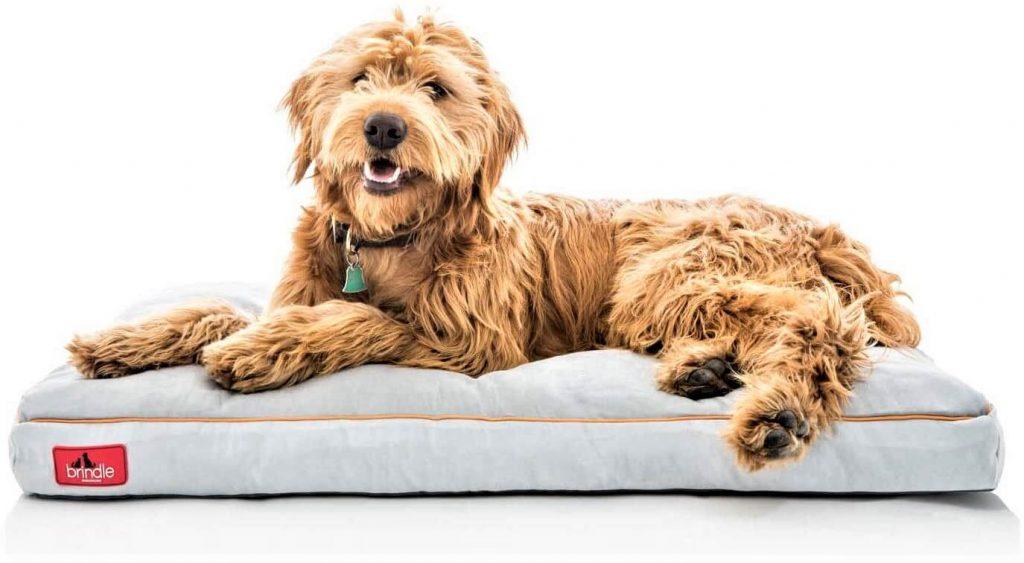 Brindle Shredded Memory Foam Dog Bed