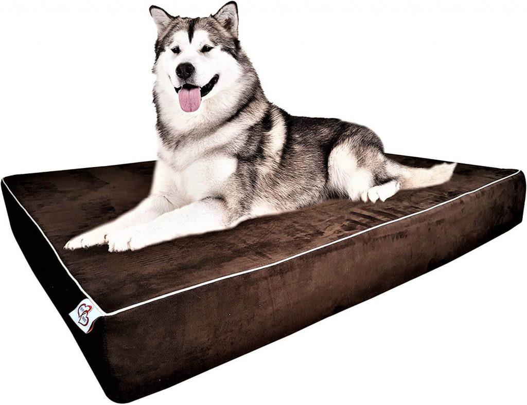 Large Dog Bed Pillow Extra Big Pet Orthopedic Dual Layer Memory Foam