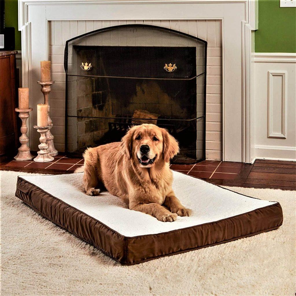 Oscar Orthopedic Small Mocha Rectangle Pillow Style Dog Bed