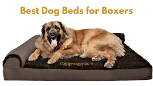 Top 7 Best Dog Beds for Boxers in USA (2021) Boxers Love These Beds