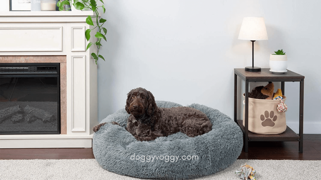 What are the Benefits of Choosing the Right Dog Bed for Bulldogs?