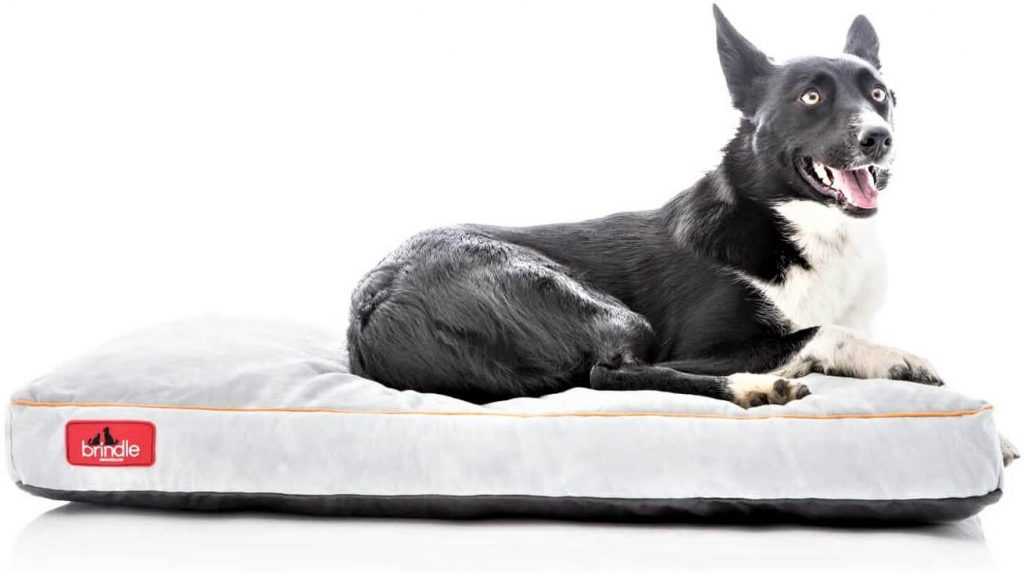 Brindle Shredded Memory Foam Dog Bed with Removable Washable Cover