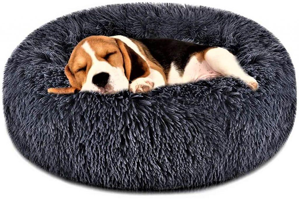 FOCUSPET Dog Bed Cat Bed Donut