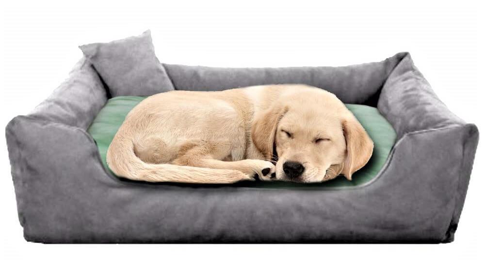 Pet Royale Reversable Velvet Bed for Big Dogs
