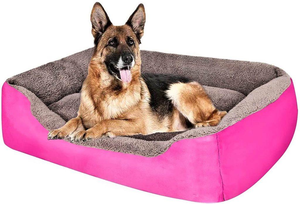 PUPPBUDD Pet Dog Bed for Medium Dogs